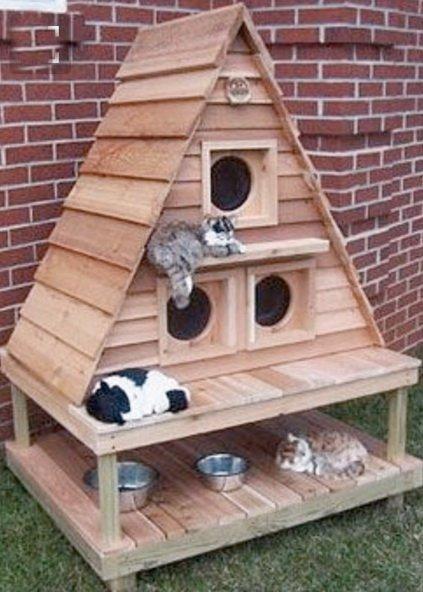 Как сделать дом для кошки своими руками из коробки
